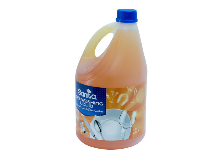 Sanita-Dishwashing-Liquid-1.jpg